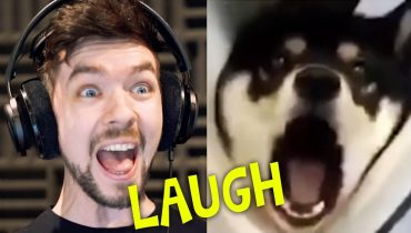 CHILD GETS SCARRED FOR LIFE | Jacksepticeye's Funniest Home Videos #4