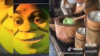 Funny Tik Tok MEMES Compilation V24