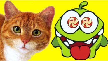 Om Nom Stories – Om Nom and The Cat – Cut The Rope | Funny Cartoon